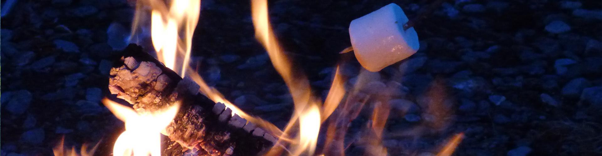 bøflaten-grill